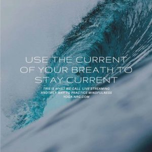 Mindfulness of Staying Current is like Surfing by Tammy Williams